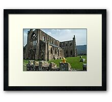 Duck at Tintern Abbey Framed Print