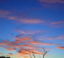 Sunrise in Australian Desert  by AdamRussell