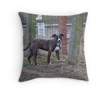 Andy's day of freedom! Throw Pillow
