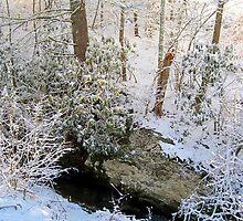 light through the winter woods 2 by LoreLeft27