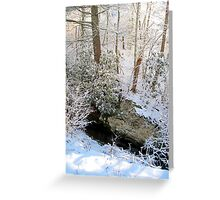 light through the winter woods 2 Greeting Card