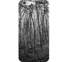 Lothlórien iPhone Case/Skin