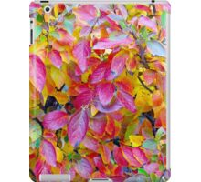 Background of vivid red and yellow autumn leaves iPad Case/Skin