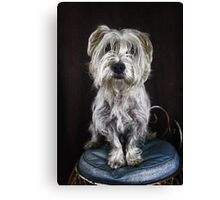 Who's the best dog in the world?! Rosco is! Canvas Print