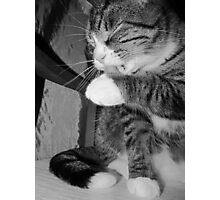 Bathing Beauty Black & White Photographic Print