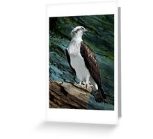 """Where Eagles Dare"" Greeting Card"