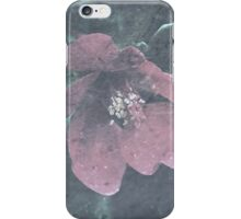 Icy Quince  iPhone Case/Skin