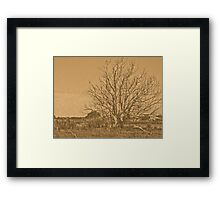 lithographic tree Framed Print