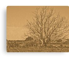 lithographic tree Canvas Print