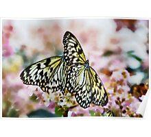 Paper Kites - watercolour Poster