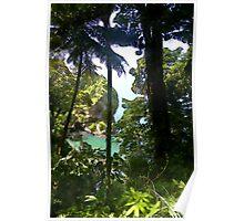 Paria Main Road, North Coast, Trinidad. Poster