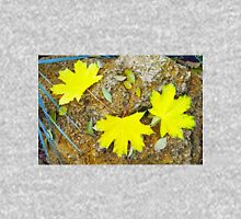 Top view of several big and small yellow autumn leaves Unisex T-Shirt