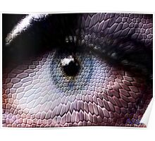 wild animals-eye Poster
