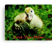 love- love you mom Canvas Print