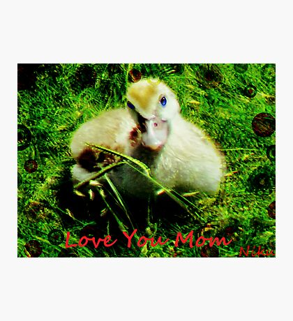 love- love you mom Photographic Print