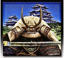 Shogun Photographic Print