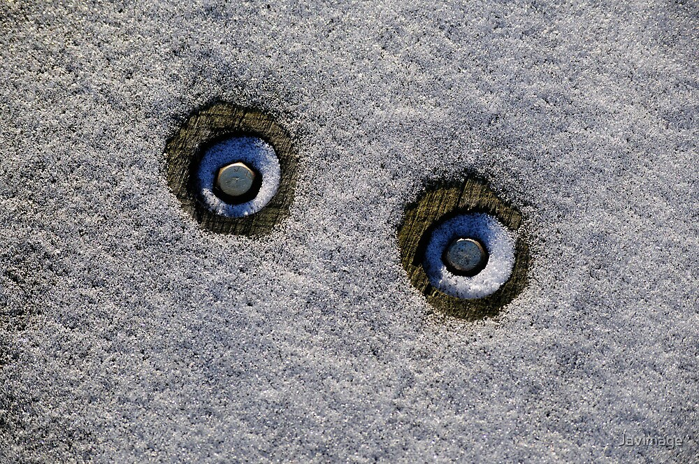 The eyes of the yeti by Javimage
