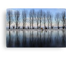 Mirror of ice Canvas Print