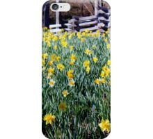 Hills Of Daffodils iPhone Case iPhone Case/Skin