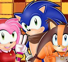 Sonic Boom: Sonic, Amy Rose and Sticks by Havocgirl