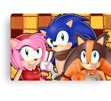 Sonic Boom: Sonic, Amy Rose and Sticks Canvas Print