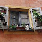 Romantic Window I by Ulla Vaereth