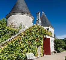 Chateau de Nitray by Steve Woods