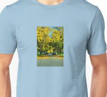 Neighborhood in Autumn Unisex T-Shirt