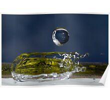 Drop of Water splashing, close up Poster
