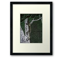 Lace monitor, skuttles in the mist. Framed Print