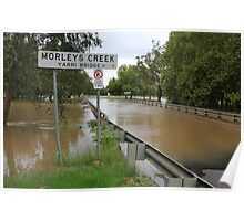 Flooded Creek Poster