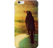 Vantage Point - iPod and iPhone skin iPhone Case/Skin