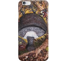 Toadstool Cement iPhone Case/Skin