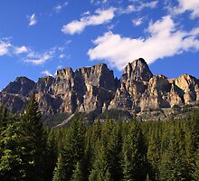 Castle Mountain by Vickie Emms