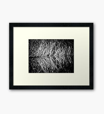 Mirrored Chaos Framed Print