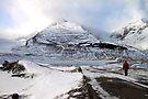 Admiring the View, Jasper, Canada by Carole-Anne