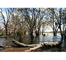 Flooded lake at Hattah Photographic Print