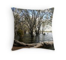 Flooded lake at Hattah Throw Pillow