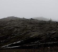 Desolation by Jillian S.