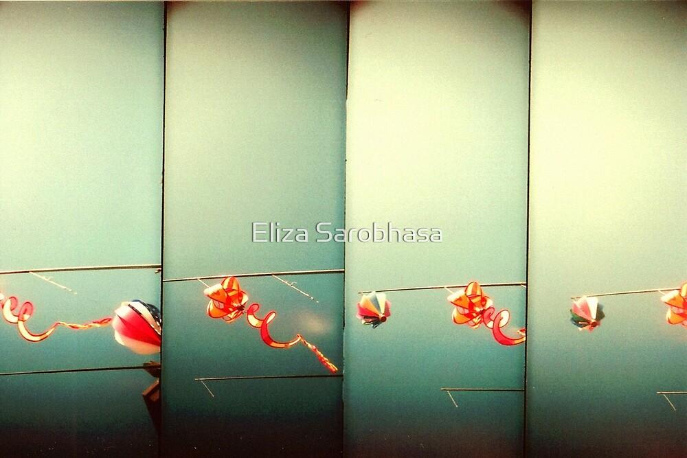 Sky Dragons by Eliza Sarobhasa