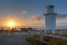 Cape Liptrap National Park • Victoria by William Bullimore