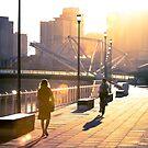 Golden morning light by Andrew Wilson