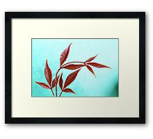 Red Leaves with Dew Drops 3 Framed Print