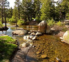 Creek at Silver Lake by Ross Campbell