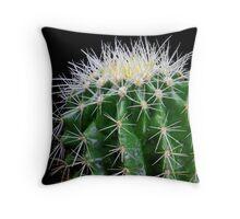 golden barrel cactus 2 Throw Pillow