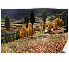 Autumn Farmland Poster