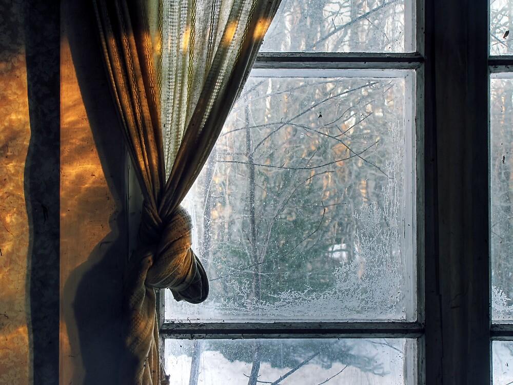 3.3.2012: Spring Morning Light by Petri Volanen