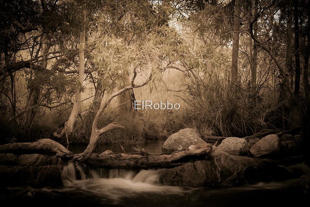 The Bush by ElRobbo