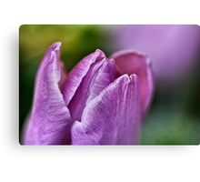 Peaceful Purple... Canvas Print