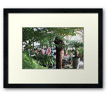 In the Palmhouse III Framed Print